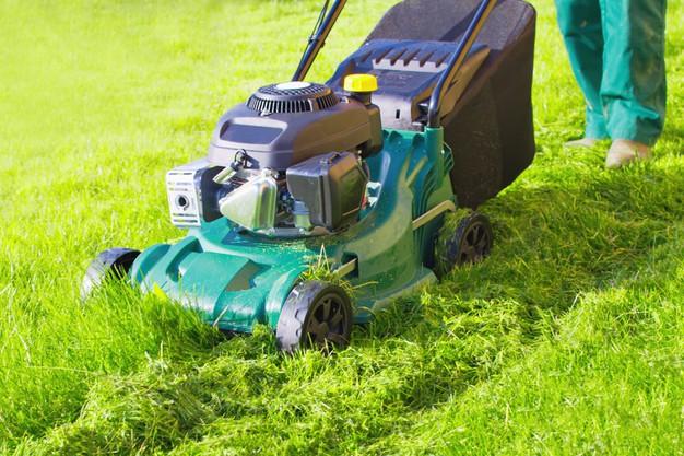 gas push lawn mower grown grass mulching
